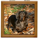 Weiner Dog Keepsake Box